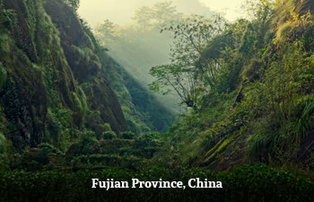 fujian-province-china.jpg