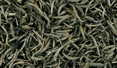 organic-white-tea-5.jpg